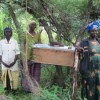 Ugandan Women Harvest Tasty Honey